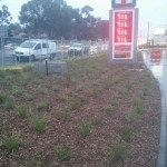 commercial landscaping torquay