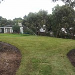 turf torquay